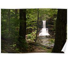 Sheldon Reynolds Waterfalls-Ricketts Glen State Park Poster