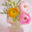 Butter Cups - A vase full of colour by Demoiselle