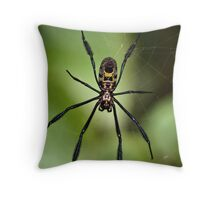Black-legged Golden Orb-web Spider Throw Pillow