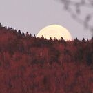 Goodnight Moon...   by maxy