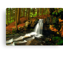 UPPER DUTCHMAN FALLS Canvas Print