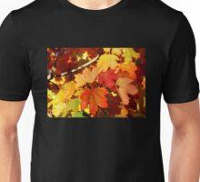 Autumn Foliage Unisex T-Shirt