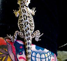 Baby Bearded Dragon  by JesusLopez