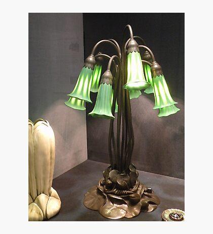ten lilly lamp/ L.C. Tiffany Photographic Print