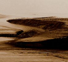 Mud Flats at Saints Rest... 3 by Lee Donavon Hardy