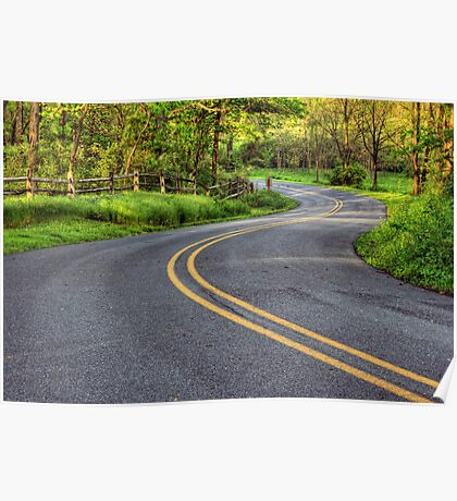Winding Country Road Poster