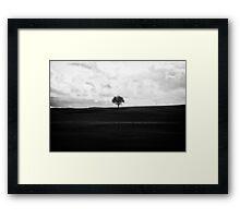 Lonley Tree Framed Print