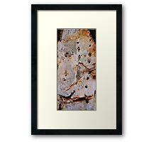 PAPER BARK Framed Print