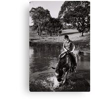 Horse at play after a jump or two  Canvas Print