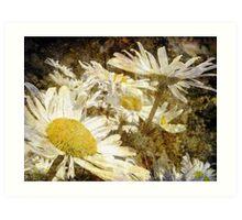 my lady daisy Art Print