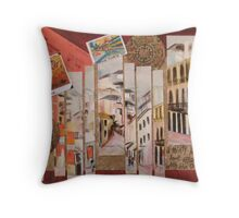 30 Year love affair with the Orient. Throw Pillow