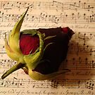 With A Song In My Heart..... by Kathy Bucari