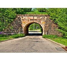 Lakeview Park Tunnel Photographic Print