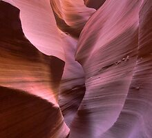 Antelope Canyon by Lawrence Yeung