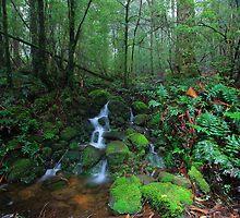 Dee River Cascade by Donovan wilson