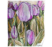 Tulips II Poster