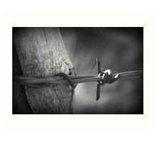 Rustic Barbed Wire, Arizona Art Print