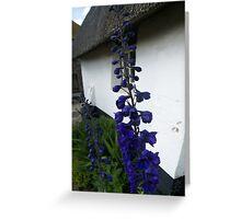 Delphinium blue Greeting Card