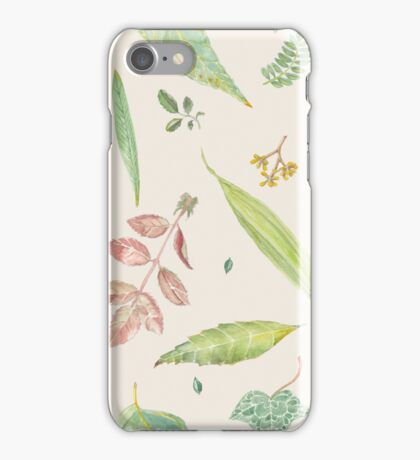 Leaf study watercolor iPhone Case/Skin