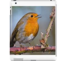 Singing Robin iPad Case/Skin