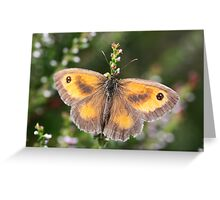 Gatekeeper Butterfly Greeting Card