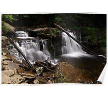 Cayuga Waterfalls-Ricketts Glen State Park Poster