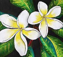 Tropical Plumeria by SassoJo