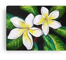 Tropical Plumeria Canvas Print