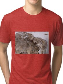 One Big Happy Family Tri-blend T-Shirt