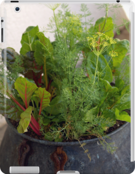 The Edible Container Garden by Betty Mackey