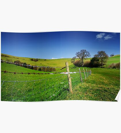 Sheep-Proof Fence Poster