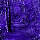 Purple Path by Nick Sage