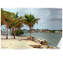 Miami Shores Poster
