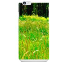 Rocky Mountain Grassland iPhone Case/Skin