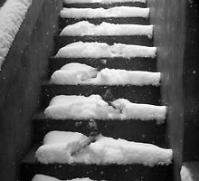 Snowy Steps by Brian Rivera