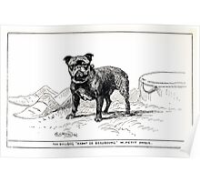 All about dogs a book for doggy people Charles Henry Lane 1900 0305 Toy Bulldog_jpg Poster