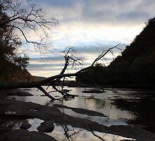 Morning on the Shenandoah by Eric Smith