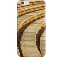 'Talons' (amphitheater) iPhone Case/Skin