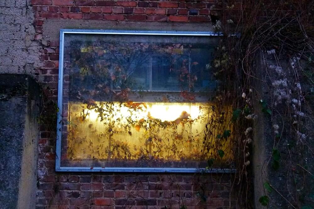A Light Behind The Overgrown Walls by Benedikt Amrhein
