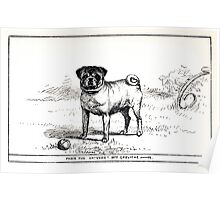 All about dogs a book for doggy people Charles Henry Lane 1900 0267 Fawn Pug_jpg Poster