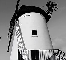 Windmill by Sorted3000