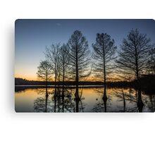 Cypress Silhouette Canvas Print