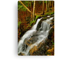 LOWER DUTCHMAN FALLS Canvas Print