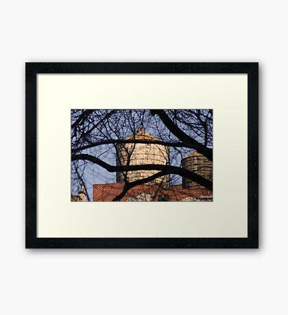 Untitled - WT 3 Framed Print