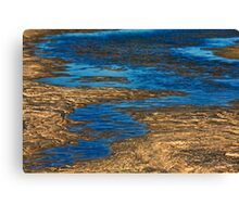 Tidal Stream Canvas Print