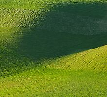 Abstract landscape by Rob Lodge