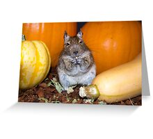 A Taste of October Greeting Card