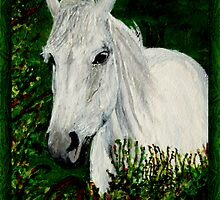 White Horse by JoMitch