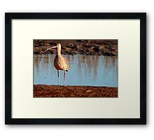Clapper By A Little Stream Framed Print