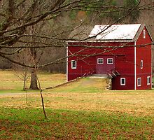 Salt Box Barn by CountryVistas